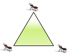 Three_ants_and_triangle_puzzle
