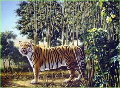 The Hidden Tiger Picture puzzle
